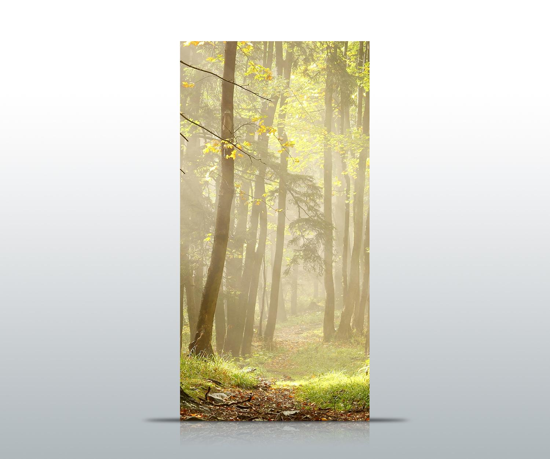 Türtapete Waldweg Tapete Kunstdruck Türbild