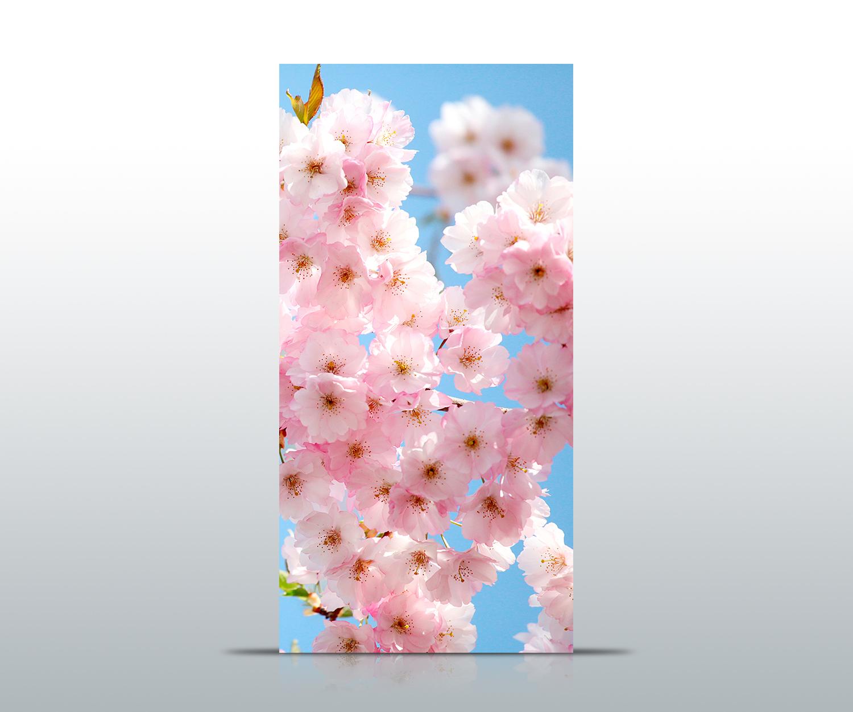 Türtapete Sakura Carta Da Parati Stampa Stampa Stampa d'Arte türbild   Funzione speciale    Per La Vostra Selezione    vendita all'asta  a0b818