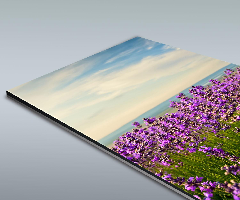 Duschr ckwand lavendel deko design ebay for Deko design shop